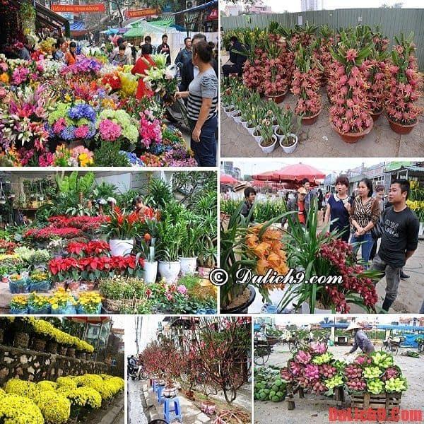 Khám phá chợ hoa Tết đẹp và rẻ ở Hà Nội