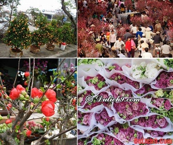 Du lịch Hà Nội tham quan chợ hoa Tết nổi tiếng: Hà Nội có chợ hoa tết nào nổi tiếng?