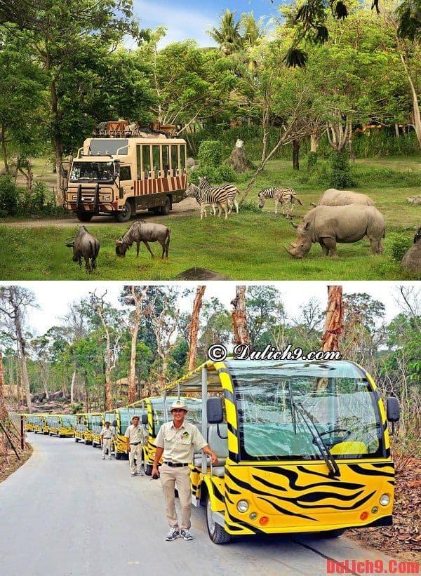 Vinpearl Safari Phú Quốc - Điểm tham quan, du lịch tuyệt vời không thể bỏ qua khi du lịch Phú Quốc dịp Tết. Kinh nghiệm du lịch Vinpearl Safari Phú Quốc