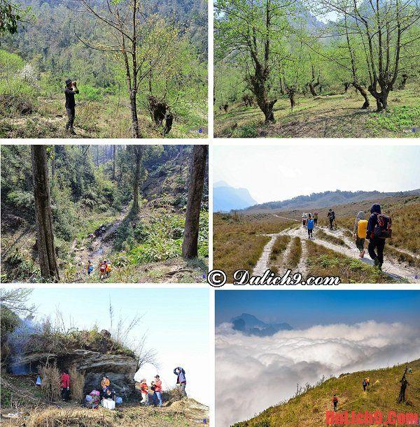 Gợi ý hành trình, lộ trình du lịch bụi, trekking