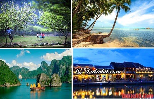 Du lịch Tết Nguyên Đán tự túc. Nên đi đâu chơi khi du lịch tết âm lịch? Kinh nghiệm du lịch tết âm lịch giá rẻ