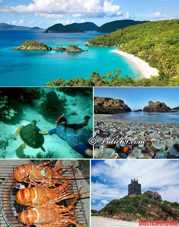 Tour du lịch tết giá rẻ. Gợi ý một số lịch trình, tour du lịch tết trong nước giá rẻ nhất