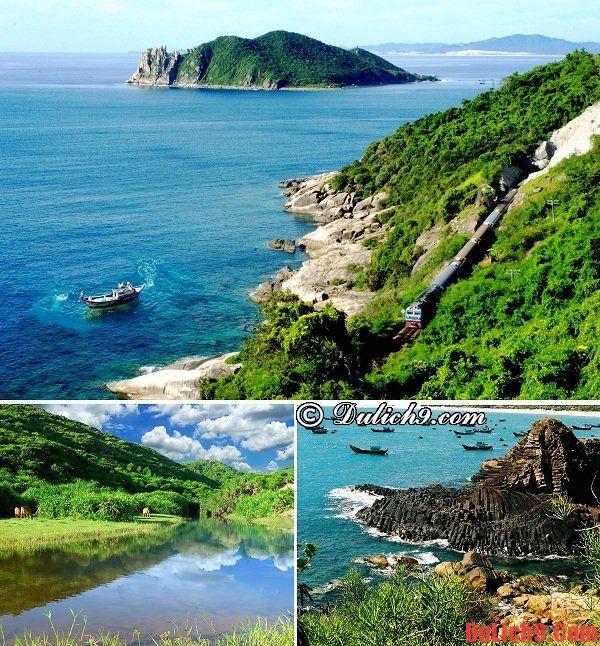 Phú Yên - Điểm đến nổi tiếng nhất và hút khách nhất miền Trung