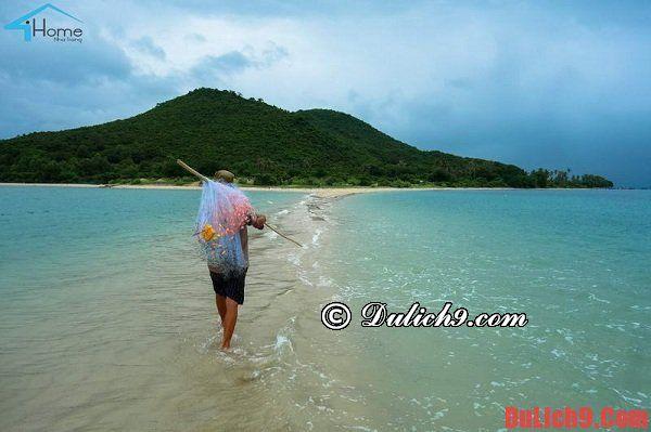 Cẩm nang hướng dẫn du lịch bụi, phượt đảo Điệp Sơn tự túc, tiết kiệm và vui vẻ