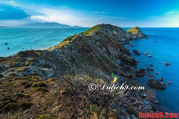 Eo Gió - Một trong những điểm tham quan du lịch Bình Định nổi bật và hút khách nhất