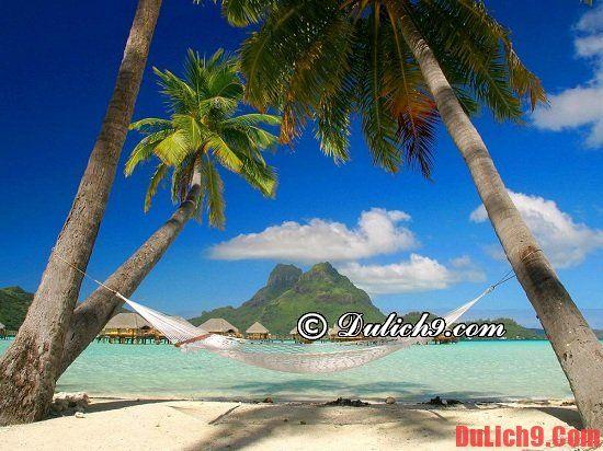 Nên đi du lịch Phú Quốc hay Côn Đảo?