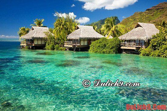 Đi du lịch Phú Quốc hay Côn Đảo?