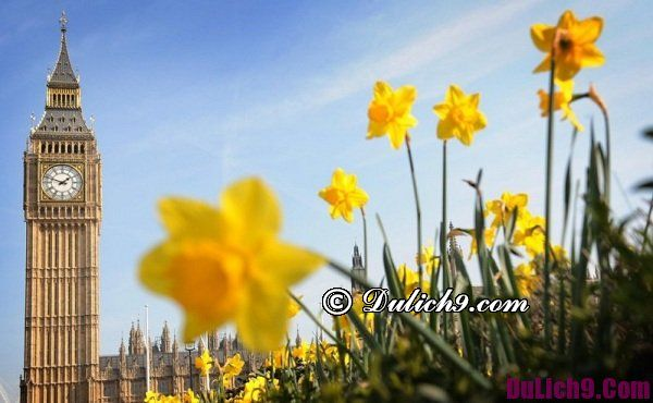 Tháng 3 nên đi du lịch nước nào đẹp nhất?