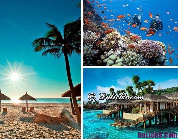 Du lịch Côn Đảo hoặc Phú Quốc trong tháng 4