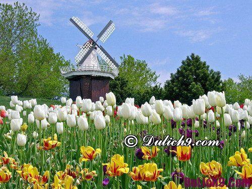Địa điểm đẹp, hút khách trong tháng 4