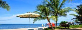 Du lịch Phú Quốc nên mua gì làm quà, gợi ý địa chỉ mua sắm?