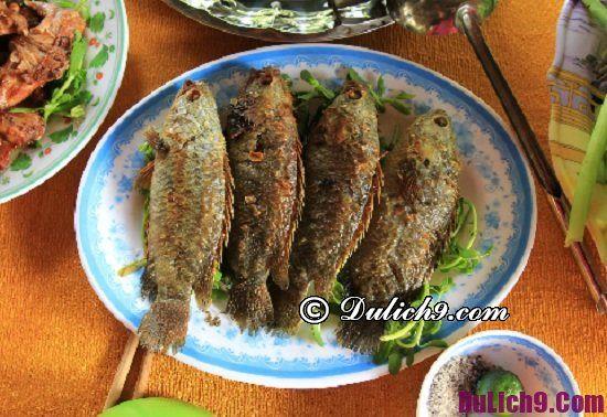 Ăn gì khi đến Cà Mau du lịch: Đặc sản Cà Mau nổi tiếng thơm ngon