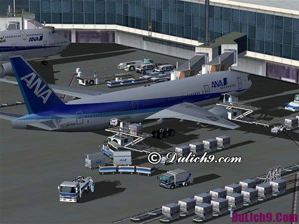 Cách di chuyển từ sân bay Narita đến Tokyo