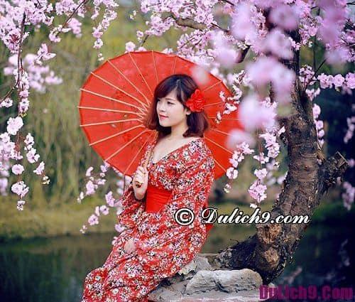 Check-in những địa điểm chụp ảnh hoa đẹp ở Hà Nội nổi tiếng