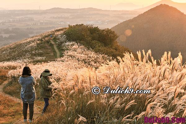 Cảnh đẹp, hấp dẫn ở Hàn Quốc nên du lịch