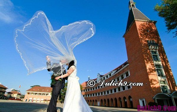 Cảnh đẹp chụp hình cưới ở Đà Lạt: Chụp hình cưới ở đâu Đà Lạt nổi tiếng, rẻ đẹp