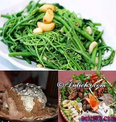 Tour du lịch Tam Đảo 1 ngày ăn gì, ăn ở đâu? Kinh nghiệm du lịch Tam Đảo trong 1 ngày