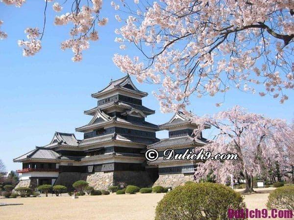 Đi du lịch Nhật Bản cần bao nhiêu tiền? Tư vấn chi phí đi du lịch Nhật Bản