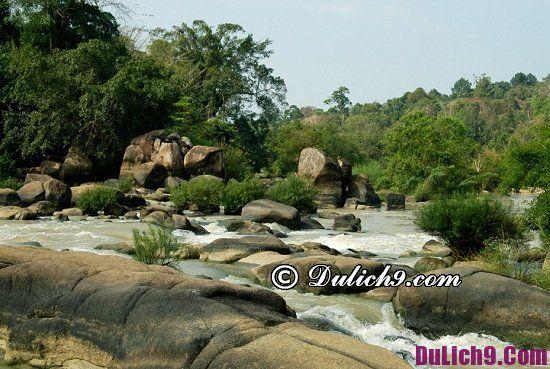 Địa điểm du lịch hoang sơ thú vị ở Đồng Nai: Du lịch Đồng Nai đi chơi ở đâu?