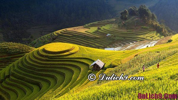 Du lịch Hà Giang mùa nào đẹp nhất, thú vị? Thời điểm đẹp nhất để đi du lịch Hà Giang