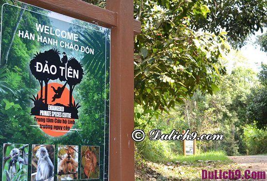 Hướng dẫn du lịch vườn quốc gia Nam Cát Tiên chi tiết từ A-Z: Địa điểm du lịch hấp dẫn ở Nam Cát Tiên