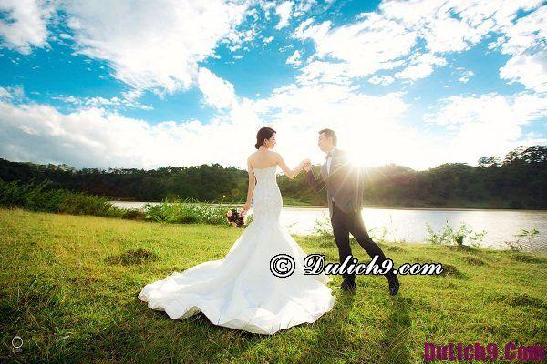 Chụp ảnh cưới Đà Lạt ở đâu đẹp? Địa điểm chụp hình cưới lãng mạn ở Đà Lạt
