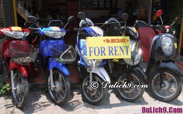 Địa chỉ thuê xe máy ở Huế giá rẻ, uy tín: Cửa hàng cho thuê xe máy chất lượng, tin cậy ở Huế