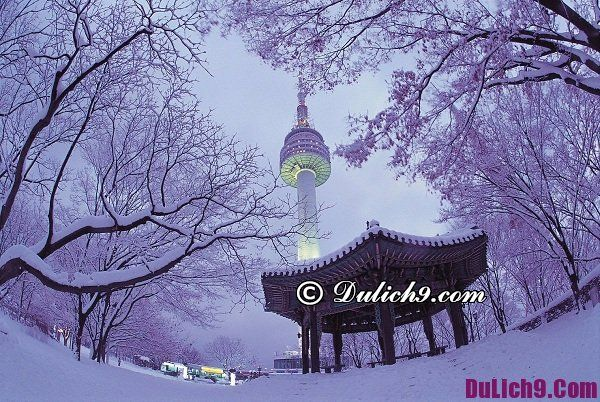 Những địa điểm ăn chơi tại Seoul về đêm: Buổi tối nên đi chơi ở đâu tại Seoul giá rẻ, nổi tiếng