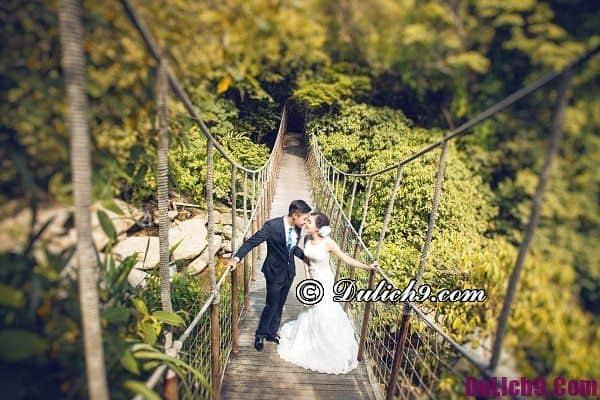 Chụp ảnh cưới ở đâu Tam Đảo? Những địa điểm chụp ảnh cưới hot nhất Tam Đảo
