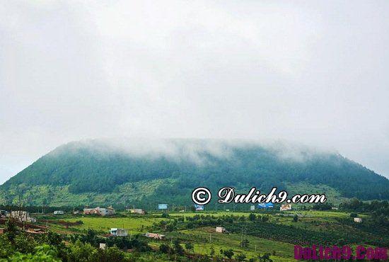 Gia Lai có địa điểm du lịch nào đẹp, nổi tiếng: Địa điểm tham quan, chụp ảnh, ngắm cảnh đẹp ở Gia Lai