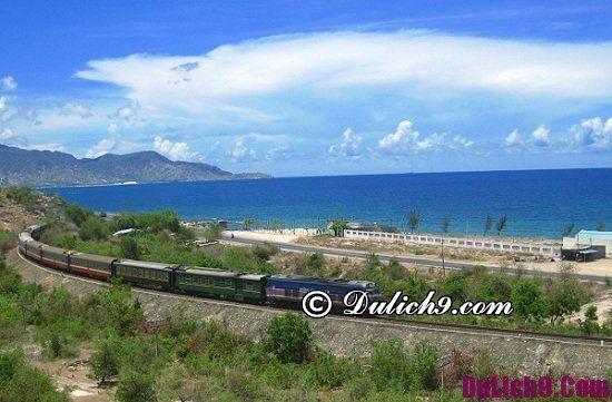 Kinh nghiệm du lịch Ninh Thuận - phương tiện đi lại ở Ninh Thuận: Du lịch Ninh Thuận bằng phương tiện gì?