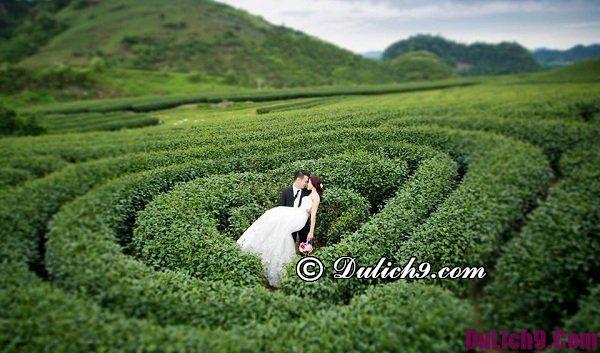 Địa điểm chụp ảnh cưới lí tưởng ở Mộc Châu