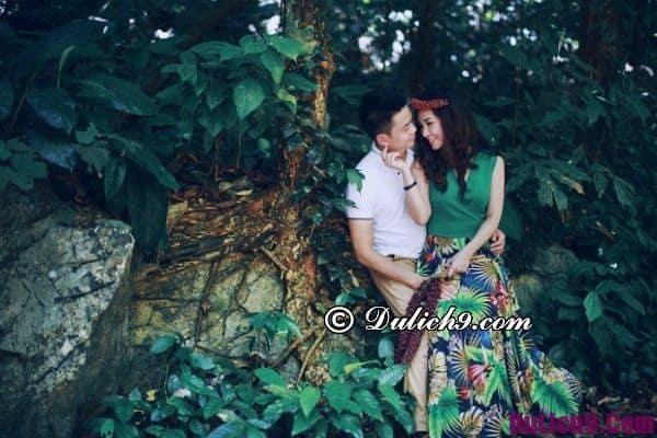 Chụp ảnh cưới lãng mạn ở rừng Cúc Phương Ninh Bình: Chụp hình cho album cưới ở đâu Ninh Bình đẹp, độc đáo nhất