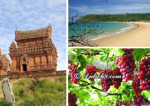 Hướng dẫn du lịch Ninh Thuận vui vẻ: Địa điểm du lịch nổi tiếng đẹp nhất Ninh Thuận