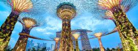 Đi du lịch Singapore cần bao nhiêu tiền, mua tour hay tự túc?