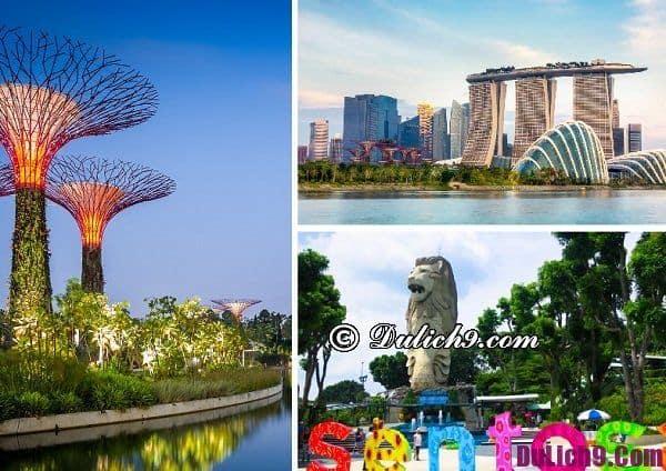 Những lưu ý khi du lịch Singapore: Du lịch Singapore nên chuẩn bị những gì?