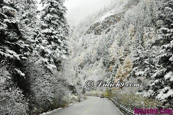 Tháng mấy thì Sapa có tuyết rơi? Du lịch Sapa mùa tuyết rơi nên đi đâu chụp ảnh?