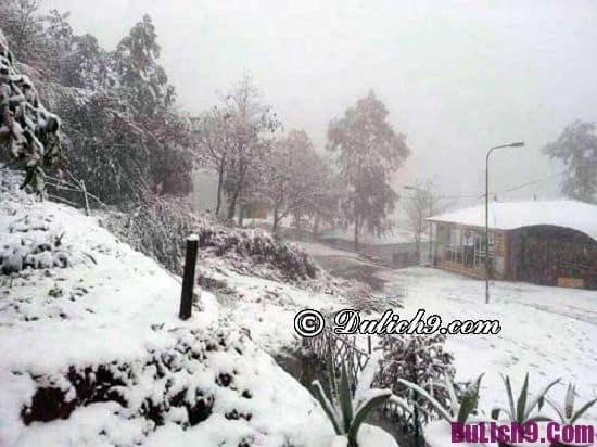 Khi nào ở Sapa có tuyết rơi? Sapa có tuyết rơi vào tháng mấy?