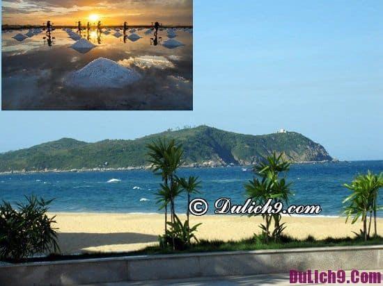 Danh lam thắng cảnh đẹp, nổi tiếng ở Quảng Ngãi: Địa điểm du lịch hot nhất Quảng Ngãi