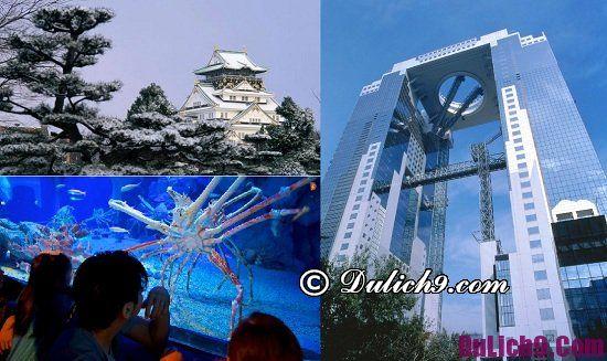 Nên đi du lịch Nhật Bản dịp Tết theo tour hay tự túc? Chia sẻ kinh nghiệm du lịch Tết âm lịch ở Nhật Bản