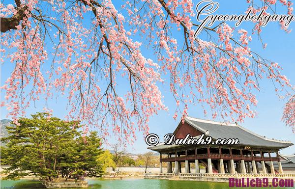 Kinh nghiệm du lịch Hàn Quốc dịp Tết: Tư vấn lịch trình du lịch Hàn Quốc dịp Tết