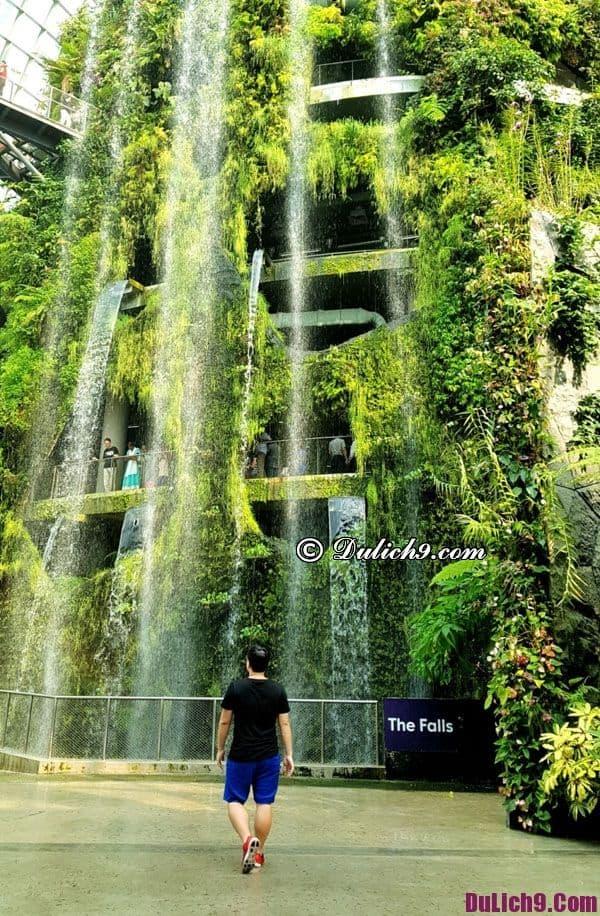 Tham quan nhà kính khi du lịch Singapore