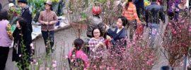 Nét độc đáo của những phiên chợ Tết Hà Nội nổi tiếng