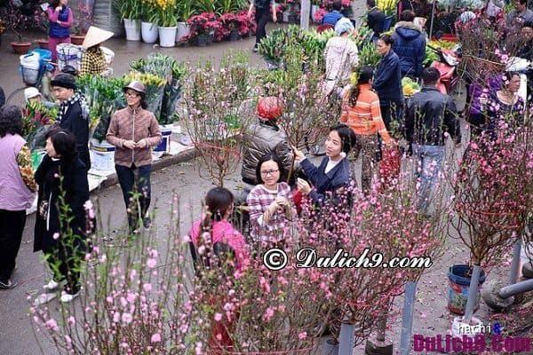 Những phiên chợ Tết ở Hà Nội: Đi chợ tết ở đâu Hà Nội?