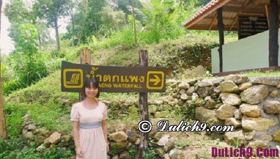 Phương tiện – cách đi tới đảo Koh Phangan