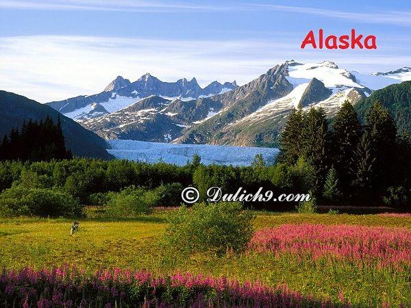 Kinh nghiệm du lịch Alaska tự túc, giá rẻ: Hướng dẫn, tư vấn lịch trình tham quan, vui chơi, ngắm cảnh, chụp ảnh ở Alaska