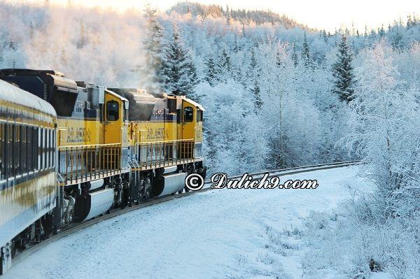 Hướng dẫn đường đi du lịch Alaska: Di chuyển tới Alaska bằng cách nào? Phương tiện đi lại ở Alaska