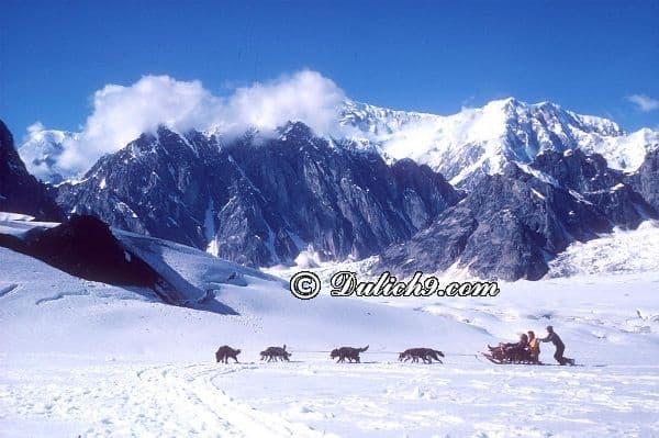 Nên ở đâu khi du lịch Alaska? Khách sạn đẹp, giá tốt ở Alaska: Kinh nghiệm tham quan, vui chơi khi du lịch Alaska
