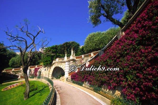 Du lịch Monaco mùa nào, tháng mấy đẹp nhất? Thời điểm lí tưởng du lịch Monaco