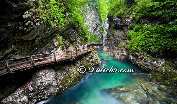 Đi đâu chơi gì khi du lịch Slovenia? Địa điểm tham quan, du lịch hấp dẫn ở Slovenia